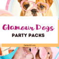 Here's a fun theme for all dog lovers out there! Host a Glamour Dogs Party! Here are some party packs and supplies you'll be dog-gone crazy about! Glamour Dogs Party Supplies | Glamour Dogs Party Decor | Glamour Dogs Party Theme
