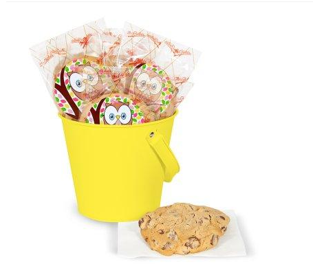 DIY Pink Owl Deluxe Cookie Favor Kit