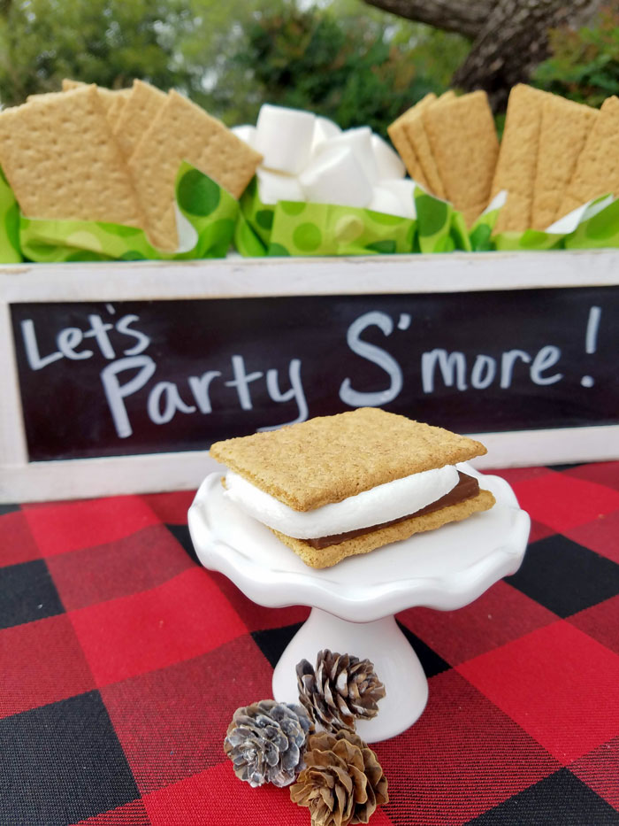 S'mores station setup with smore on a white cupcake stand