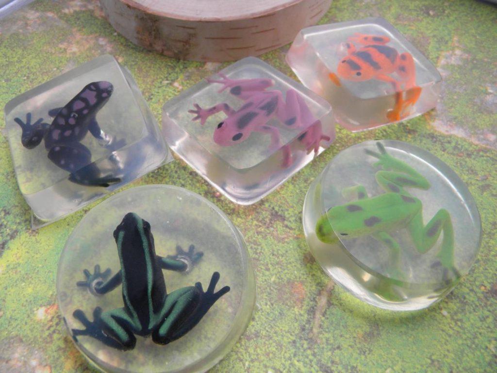 frog soaps