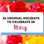 Love celebrating weird and unique holidays? Us too! Here are some of May's most unusual days to celebrate... there's always a reason for a party! #May #weirdholidays #celebratetoday