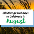 Love celebrating weird and strange holidays? Us too! Here are some of the strange holidays to celebrate in August... there's always a reason for a party! #August #weirdholidays #celebratetoday #specialholiday