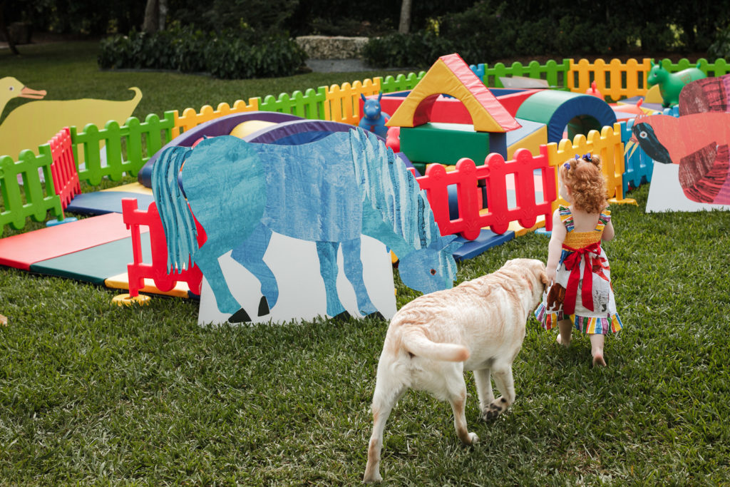 colorful outdoor playset in backyard at birthday party