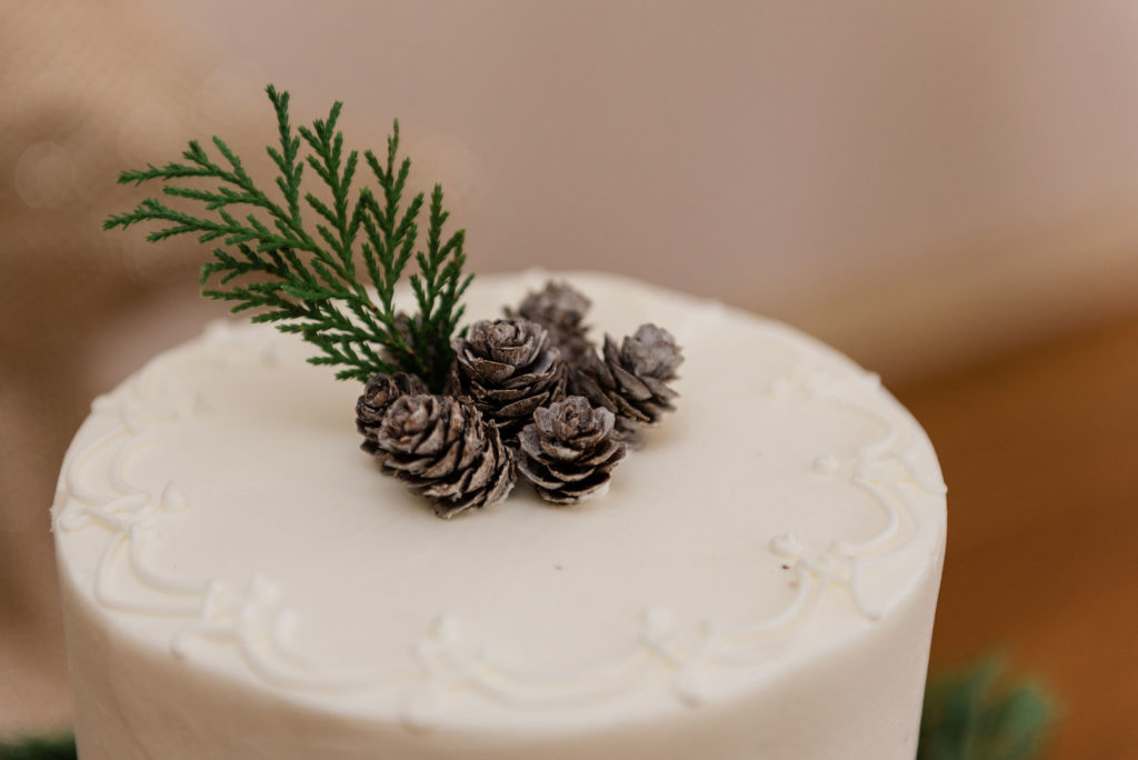 winter cake topped with mini pinecones