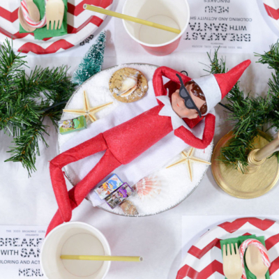 Holiday and Christmas Party Ideas, Supplies and Decor
