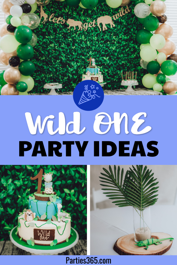 wild one birthday party ideas