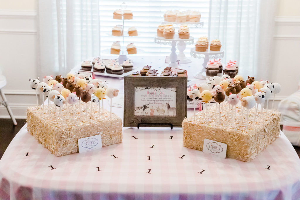 barnyard themed first birthday party dessert table with cake pops and cupcakes