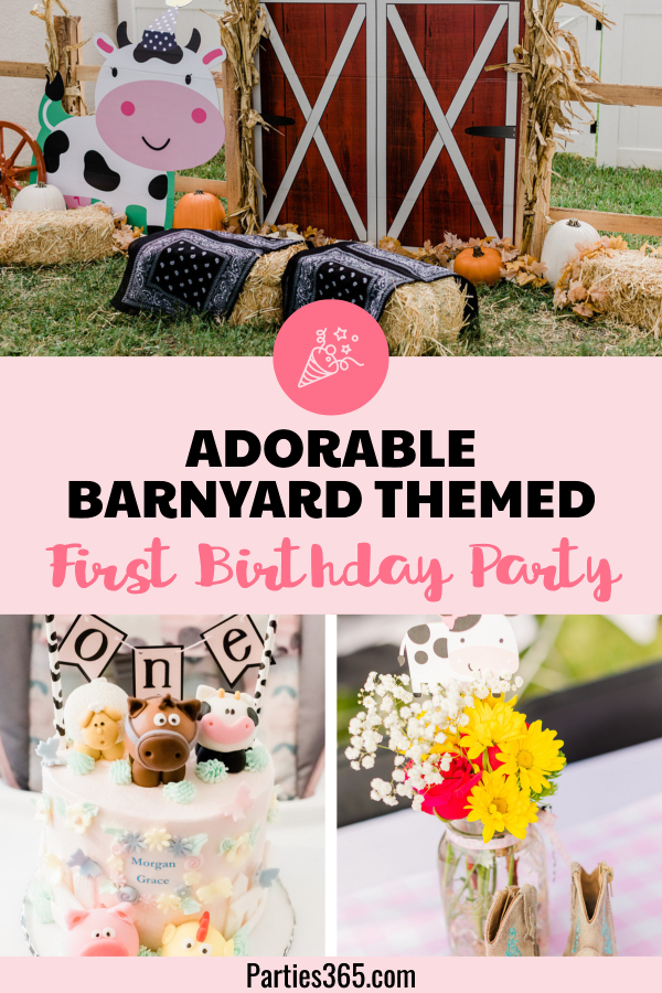 adorable barnyard themed first birthday party ideas for a girl
