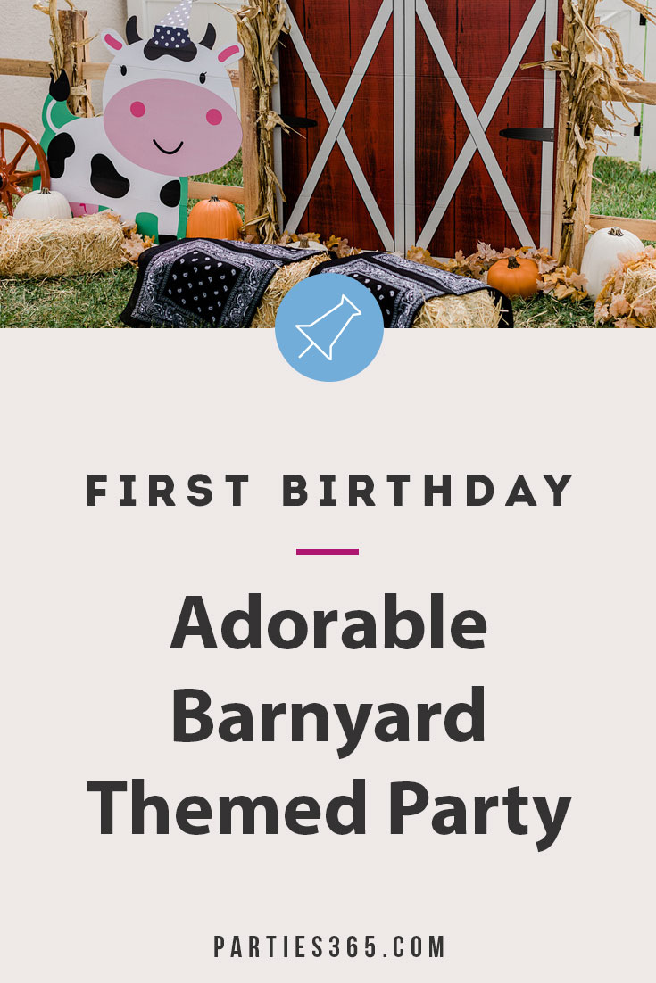 adorable barnyard themed first birthday party