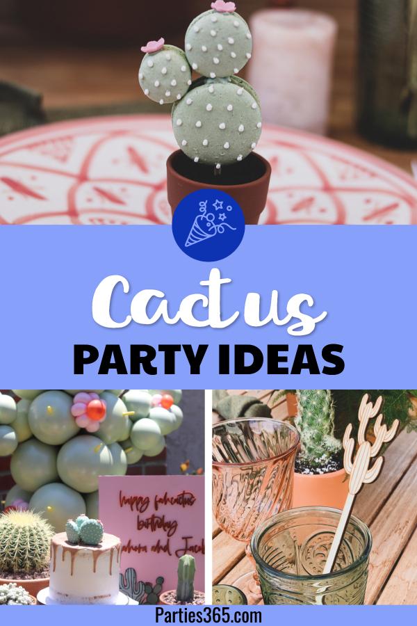 cactus theme birthday party ideas
