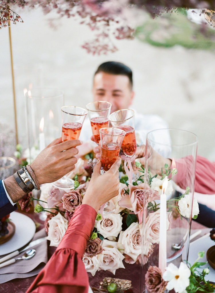 raise a glass of champagne at a picnic
